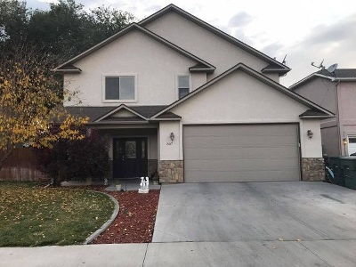 Grand Junction Single Family Home For Sale: 307 Carriage Hills Court