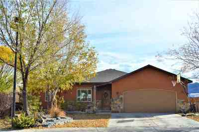Fruita Single Family Home For Sale: 440 Tara Drive