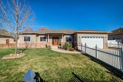 Fruita Single Family Home For Sale: 611 Beech Avenue