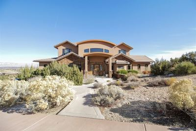Grand Junction CO Single Family Home For Sale: $1,200,000