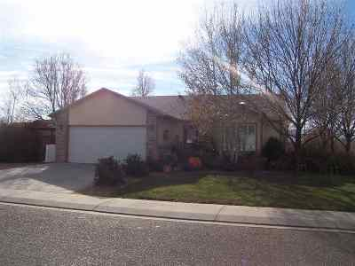 Fruita Single Family Home For Sale: 646 Bayberry Court