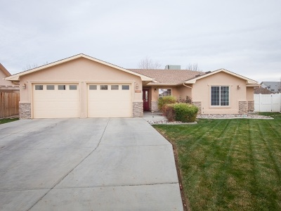 Fruita Single Family Home For Sale: 900 Agate Court