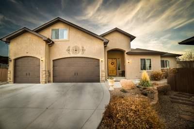 Grand Junction Single Family Home For Sale: 501 Swan Lane