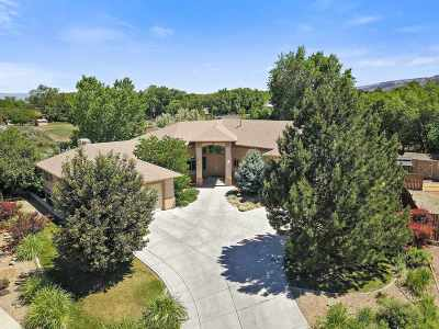 Grand Junction Single Family Home For Sale: 2073 Pannier Court