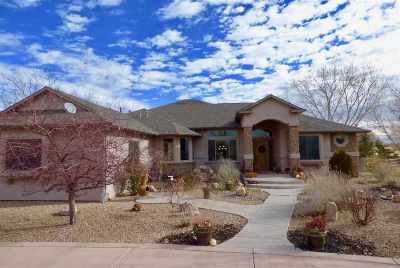 Grand Junction Single Family Home For Sale: 1007 Pritchard Mesa Court