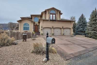 Grand Junction Single Family Home For Sale: 2065 Corral De Terra Drive