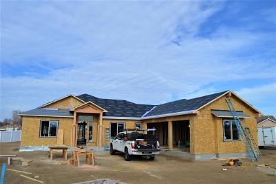 Fruita Single Family Home For Sale: 1113 Aspen Village Lp