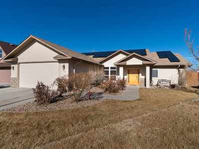 Fruita Single Family Home For Sale: 382 N Bookcliff Court