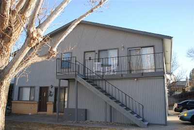 Grand Junction Condo/Townhouse For Sale: 512 Rado Drive #D