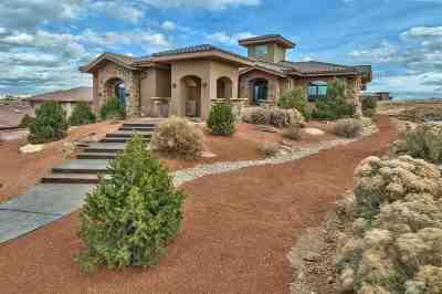 Grand Junction CO Single Family Home For Sale: $1,275,000