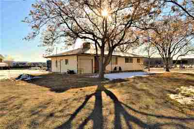 Palisade Single Family Home For Sale: 3691 G Road