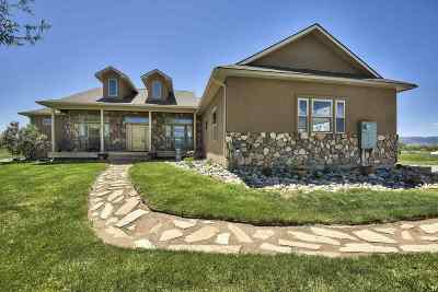 Grand Junction Single Family Home For Sale: 225 Meeka Court