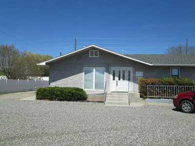 Grand Junction Commercial For Sale: 2935 Patterson Road