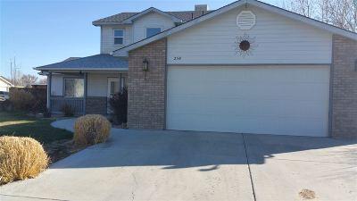 Fruita Single Family Home For Sale: 258 Dogwood Drive