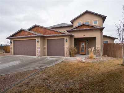 Fruita Single Family Home For Sale: 1267 River Rock Court