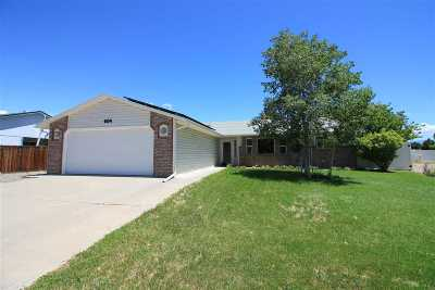 Grand Junction Single Family Home For Sale: 604 Mesa Valley Drive