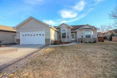 Fruita Single Family Home For Sale: 1264 Dakota Drive