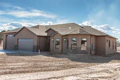 Grand Junction Single Family Home For Sale: 807 Freedom Way