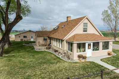 Fruita Single Family Home For Sale: 1365 20 Road