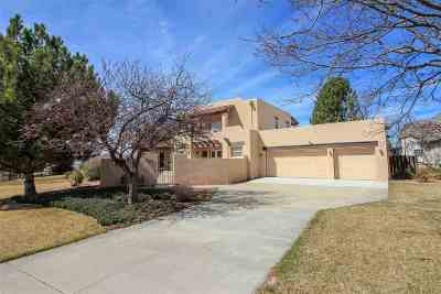 Single Family Home For Sale: 783 N Sedona Court