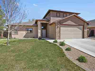 Fruita Single Family Home For Sale: 1081 Wingate Drive