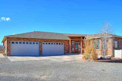 Grand Junction Single Family Home For Sale: 205 Knob Hill Drive