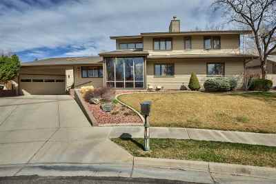Grand Junction Single Family Home For Sale: 1534 Crest View Court
