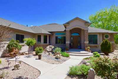 Single Family Home For Sale: 1007 Pritchard Mesa Court