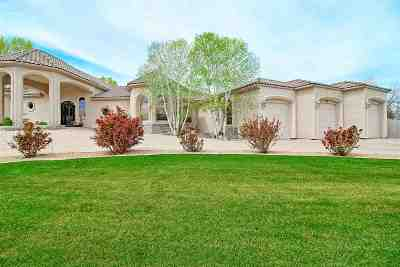 Grand Junction CO Single Family Home For Sale: $885,000