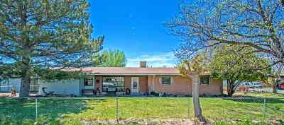 Grand Junction CO Single Family Home For Sale: $230,000