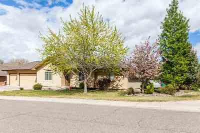 Grand Junction Single Family Home For Sale: 636 Big Stone Lane