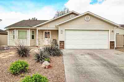 Single Family Home For Sale: 523 Autumn Breeze Drive