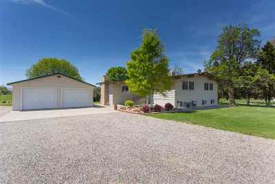 Palisade Single Family Home For Sale: 3423 D Road
