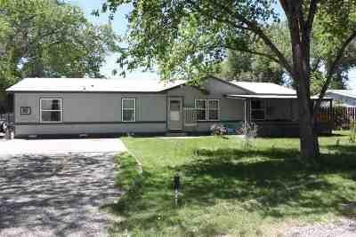Single Family Home For Sale: 617 Americana Drive