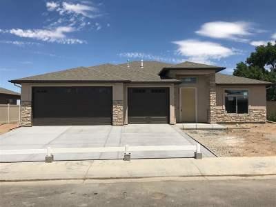 Single Family Home For Sale: 2920 Iron Peak Avenue