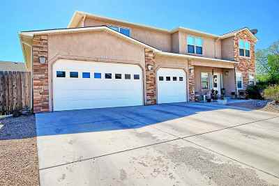 Fruita Single Family Home For Sale: 854 Mission Court