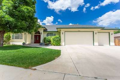 Grand Junction Single Family Home For Sale: 2066 Pannier Court