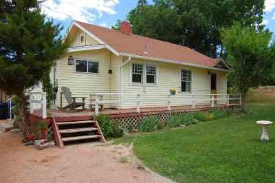 Grand Junction Single Family Home For Sale: 524 Mockingbird Lane