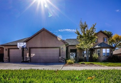 Fruita Single Family Home For Sale: 1288 River Rock Court