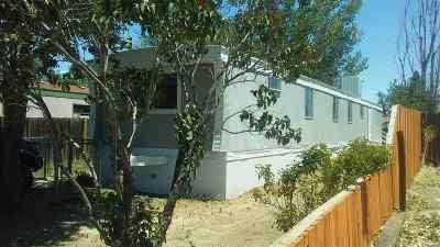 Fruita Single Family Home For Sale: 209 Honeysuckle Circle