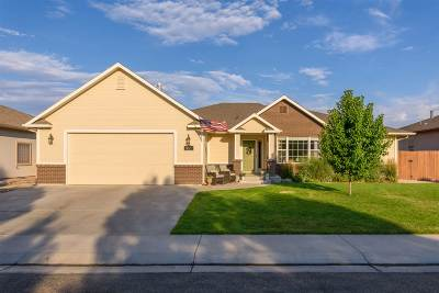 Grand Junction Single Family Home For Sale: 855 Grand Vista Way
