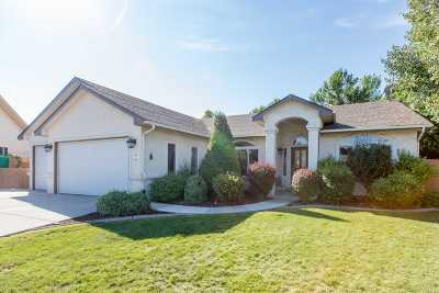 Single Family Home For Sale: 3720 Christensen Court