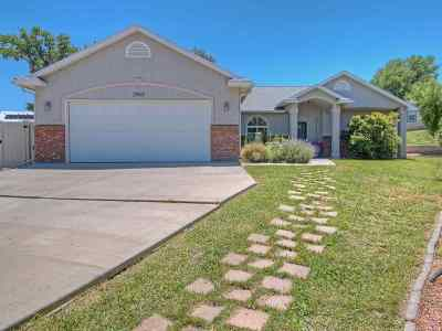 Grand Junction Single Family Home For Sale: 2963 Circling Hawk Court