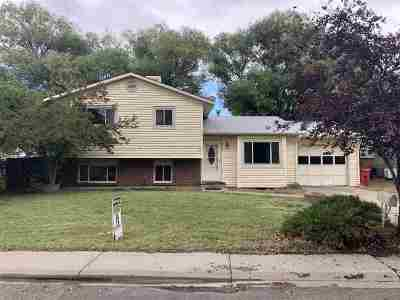 Single Family Home For Sale: 3010 1/2 Bookcliff Avenue