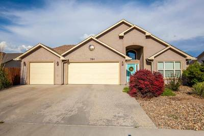 Fruita Single Family Home For Sale: 784 Placer Drive