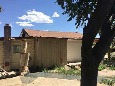 Grand Junction Single Family Home For Sale: 575 Dike Road