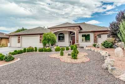 Single Family Home For Sale: 360 Caprock Drive