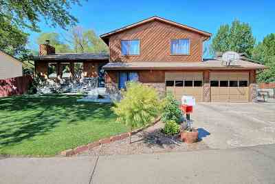 Single Family Home For Sale: 613 E Indian Creek Drive