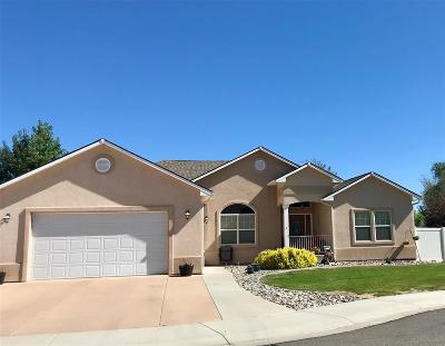 Grand Junction Single Family Home For Sale: 2098 Vivian Court