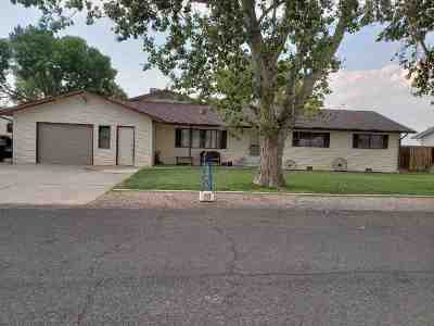 Single Family Home For Sale: 2946 Shelley Drive